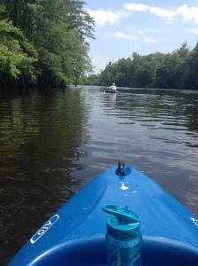 kayaking on waccamaw